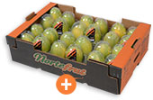 Mamão papaya aliança premium ClamShell 9kg