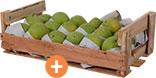 Mamão papaya Aliança comum 7kg